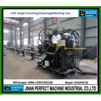 China Top Supplier CNC Angle Line For Punching, Shearing And Marking Machine in Tower Industry Manufactures