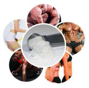 Safety Legal Anti Estrogen Clomid / Clomifene Citrate Powder For Fertility Drugs , CAS 50-41-9 Manufactures