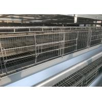 High Efficiency  Chicken Farm Water System Easy Maintain 15-20 Years Lifespan