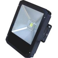 IP65 50W LED tunnel lighting with Meanwell led driver Manufactures