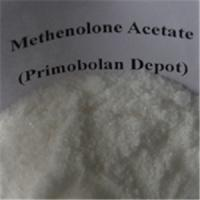 Healthy Oral Primobolan Methenolone Acetate Steroids Bodybuilding Bulking Cycle  For Women Manufactures