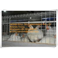 Poultry Farm Galvanized Steel Sheet Silver Automatic Broiler Chicken Cage  with Feeding&Drinking System Manufactures