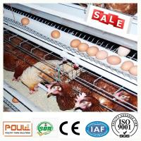 Durable Galvanized Laying Hen Chicken Cage System From Poul Tech Manufactures
