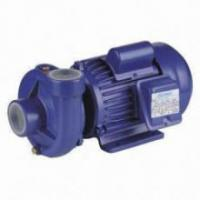 Single Impeller Agricultural Water Pump 0.75HP For Household Watering Manufactures