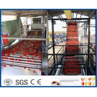200KW Power Tomato Ketchup Machine Tomato Processing Machine 304 Stainless Steel Material Manufactures