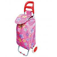 China Lightweight Foldable Laundry / Shopping Trolley Cart Rolling Push Dolly with Tote on sale