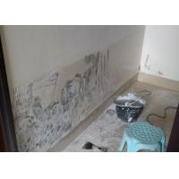 Mortar Based Interior Wall Putty Exterior For Cement Concrete , High Resistant Manufactures