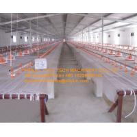 Quality Broiler Chicken Farm White PE Plastic Mesh & Fencing Net Chicken Floor Raising System for sale