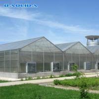 China Commercial Polycarbonate Sheet Greenhouse / PC Sheet Greenhouse Customized Material on sale