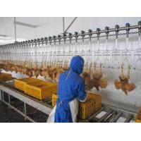 poultry slaughtering line Manufactures