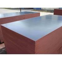 18mm poplar hardwood combi core film faced plywood for construction Manufactures