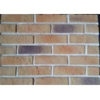 Lightweight Artificial Outdoor Faux Brick Panels For Apartment / Hospital / University Manufactures