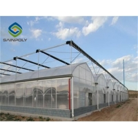 China Venlo roof type polycarbonate sheet agricultural multi-span greenhouse for vegetables on sale
