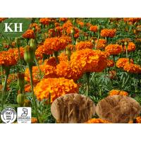 Marigold Root Extract, Alpha-Terthienyl; 2, 5-Di(2-thienyl)thiophene, 2, 2': 5', 2''-Terth Manufactures