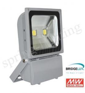 100W 120LM Portable LED FloodLights, High Lumen Waterproof IP65 LED Flood Lights Manufactures