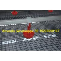 Buy cheap Chicken Farming Hot Galvanized Cage H Type Battery Baby Layer Chicken Cage & Small Layer Cage in Chicken Shed for Ghana from wholesalers
