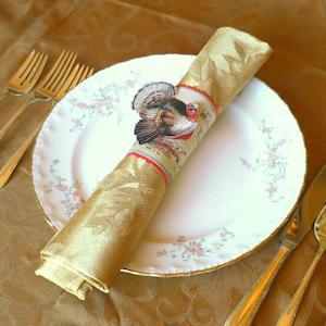 100% cotton Restaurant Banquet Napkin Manufactures