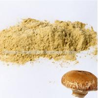 Mushroom Extract Powder Manufactures