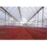 Transparent Greenhouse Coverings Polyethylene Film Prevent Dripping Onto Plants Manufactures