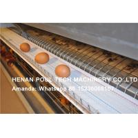 Chicken Feed-Poultry Farming Equipment Hot Galvanized Chicken Coop & Layer Cage to Increase Egg Production for Ghana Manufactures