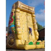 PVC Tarpaulin Inflatable Sports Games Manufactures