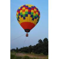 Colorful Polymorphic Fairy Tale World Inflatable Hot Air Balloon  To  Wedding Trip Manufactures
