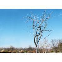 Stainless Steel Tree Sculpture Withered , Outdoor Metal Tree Sculpture Garden Manufactures