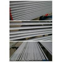 Quality Tp304 | Tp304L | Tp316L  Seamless Austenitic Stainless Tubing | AP for sale