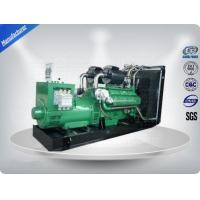 Quality Natural Gas Electric Generators , Stamford Alternator Natural Gas Generators for sale