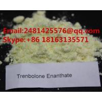 High Purity Raw Steroid Trenbolone Enanthate Powder CAS 10161-33-8 For Bodybuilding Manufactures