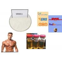 REV - ERB Agonist SARMs Powder SR9011 For Muscle Building And Enhance Endurance Manufactures