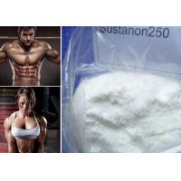 Raw Powder Sustanon 250 Bodybuilding Testosterone Blend for Strong Bones and Muscle Mass Manufactures