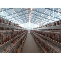 PVC Down Pipe Poultry Farm Structure With Grey paint Surface Manufactures