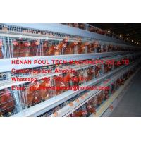 Poultry Farming A Type Battery Layer Chicken Cage Equipment  Cold or Hot Galvanized Steel Material Silver White Color Manufactures