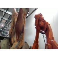 Non Standard Red Meat Automatic Production Line For Pork / Beef / Mutton Splitter Manufactures