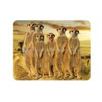 Custom Animal 3D Fridge Magnets PET Lenticular Thickness 0.6mm Manufactures