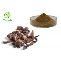 China Brown Color Organic Dandelion Root Powder Dry Place Storage 2 Years Shelf Life on sale