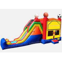 Durable Inflatable Slide, Water Slide for Water Park (CY-M2147) Manufactures