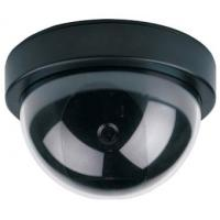 Dome Camera (JS-310Y) Manufactures