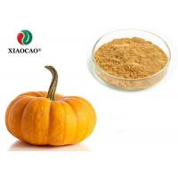 Food Supplement Organic Herbal Extracts Nutritional Organic Pumpkin Powder Manufactures