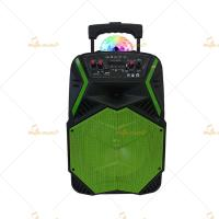 High Powered 15 Inch Bluetooth Trolley Speaker with Bass / Remote Control Manufactures