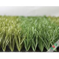 Stem Grass 13000Dtex Strong Blade Autumn And Spring Color Series Manufactures