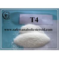 T4 Fat Loss Hormones Chemical Raw Material CAS 55-03-8 Levothyroxine Sodium / T4 Manufactures