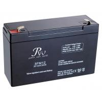 12 Months Small Deep Cycle Battery High Performance AGM Battery Manufactures