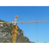 Tower Crane QTZ63 Construction Mobile Tower Crane5610 Manufactures