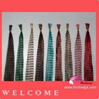 China 2011 Custom Fashion High Quality Feather Hair Extension on sale