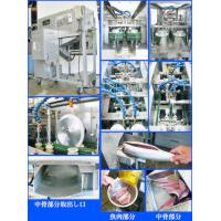 Middle Type Fish Filleting Machine Manufactures