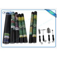 100% PP Raw Non Woven Landscape Fabric Protect Plant / Garden / Fruit / Weed Control Manufactures