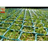 Grass Protection Mesh , Garden Mesh Netting , Turf Reinforcement Mesh , 650 GSM , HDPE Materials Manufactures