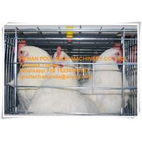 Silver Galvanized Steel Cage Battery Cage Layer Breeder Chicken Cage/Coop for Chicken Farming Manufactures